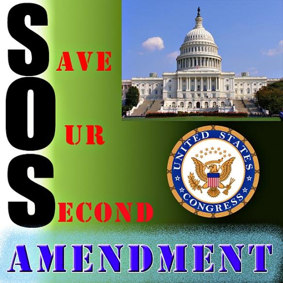 Save Our Second Amendment