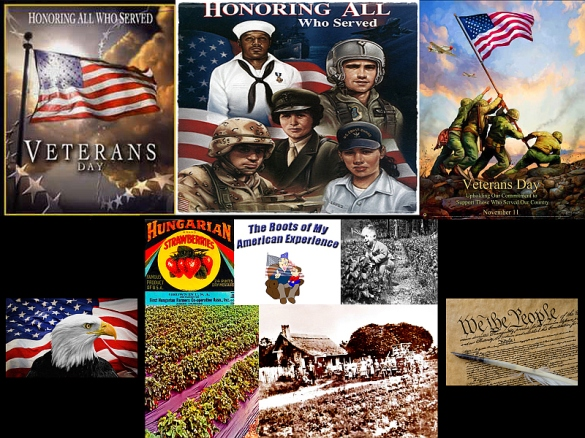 Veterans Day, Farming, and the American Flag